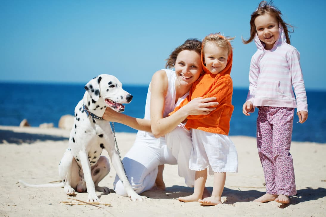 Happy family with Dalmatian resting at the beach in summer