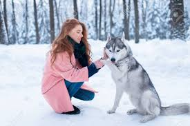 Building the trust with your Husky
